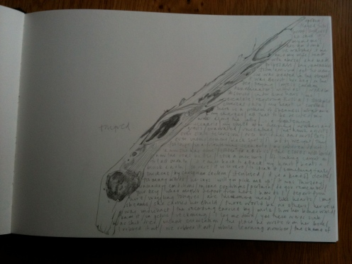 Page from 'T.R.E.E.', text and sketch journal by Carol Watts